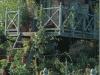treehousecompany1